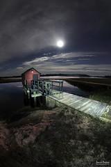 Full Moon in a cranberry bog...