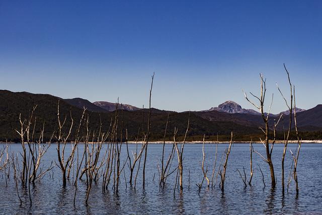 Lake Burbury, Tasmania.