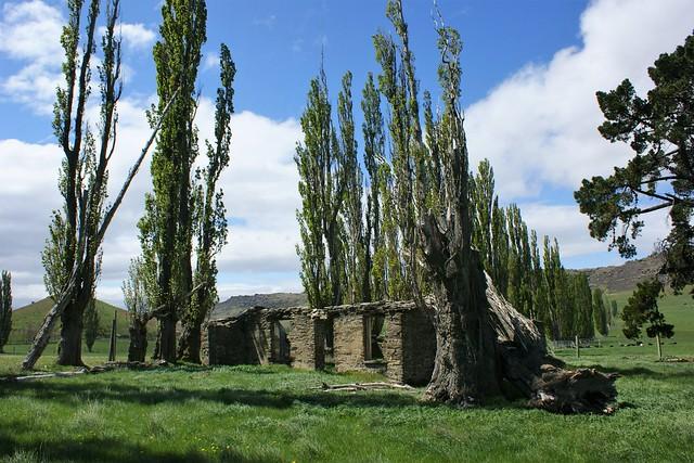 Central Otago: near Mitchell's Cottage (4)