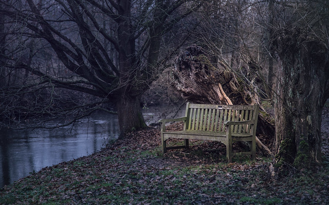 the bench at the riverside