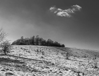 Wittenham Clumps | by aiddy