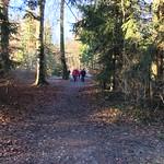 2018_12_12_7_Brücken_Aaretal_Kiesental (121)
