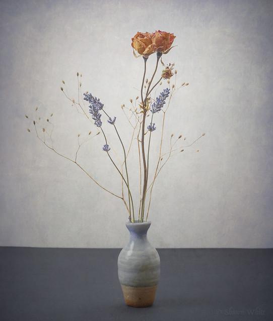 Vase & Dried Flower Still Life II