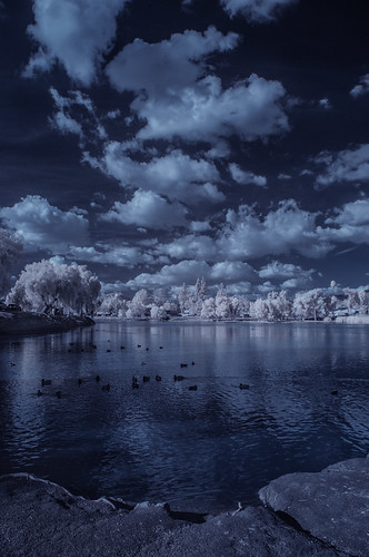 infrared infraredphotography convertedinfraredcamera ir channelswapping lindolake lakeside clouds vegetation water sky highcontrast nature surreal composition reflections trees