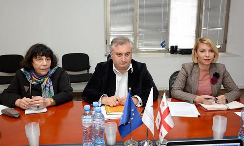 სახალხო დამცველი ევროპის საბჭოს დელეგაციის წევრებს შეხვდა 12.11.18 Public Defender Meets Members of Council of Europe Delegation