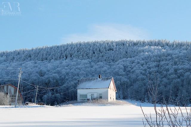 Maison abandonnée, La Frigorifiée