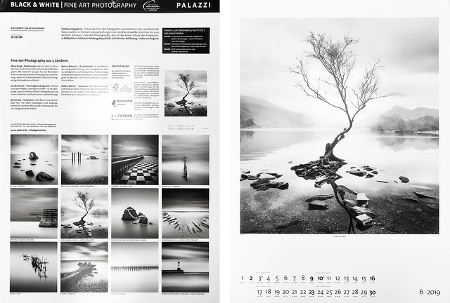 Palazzi Calendar 2019 - Black & White Fine Art Photography