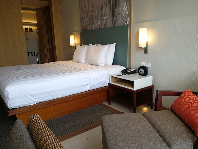 <p>キングサイズベッドと一人用のカウチ</p>