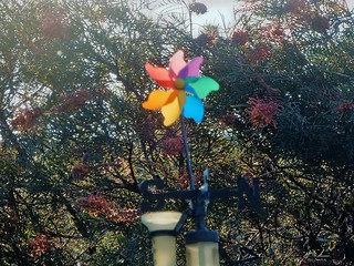 Pinwheel on Weather Vane