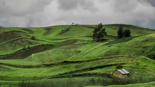 peaceonearthorg ecuador rural pastoral