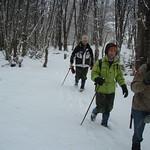 2004_0715pn invierno 04