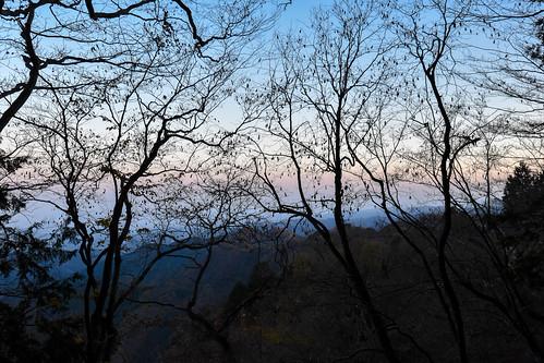 tokyoprefecture japan odakesan sunset trees