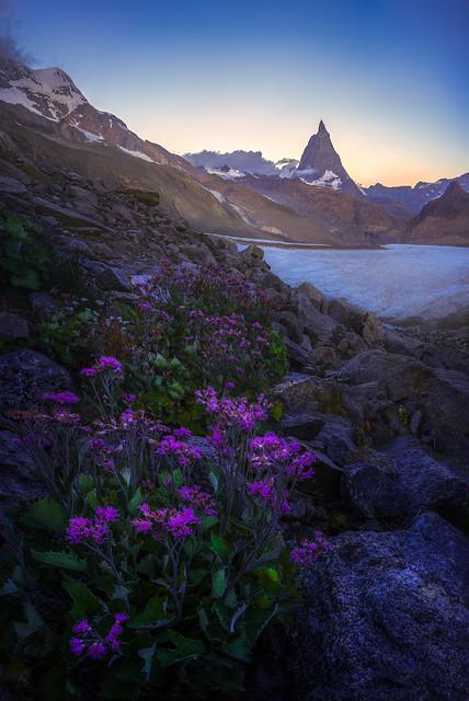 The Matterhorn at Sunrise