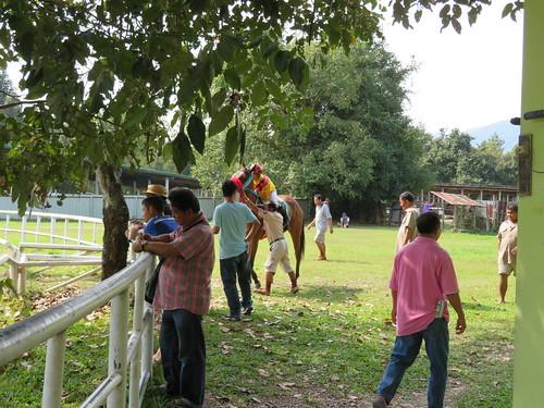 チェンマイ競馬場のパドックに入ってくる騎手と馬