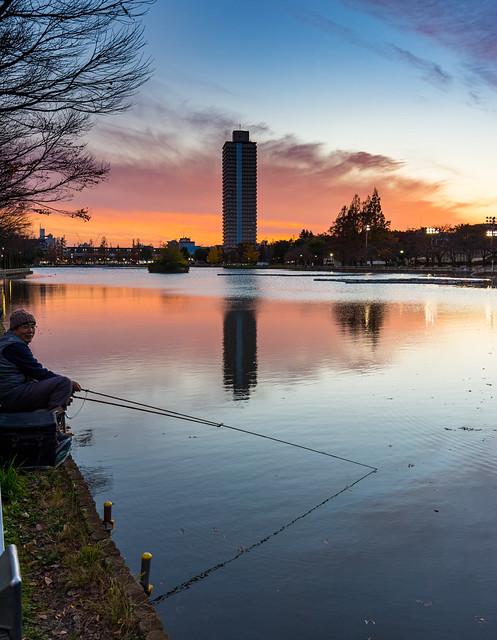 #335 Angler at dusk