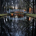 Maizerets park - the pond by le cabri