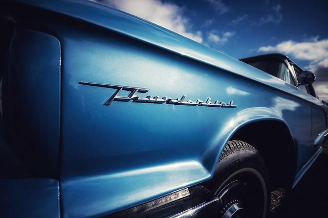 Sky Blue Thunderbird