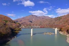 秋の五十里湖を渡る列車 駅から5分ほど歩いた道路橋からの眺望