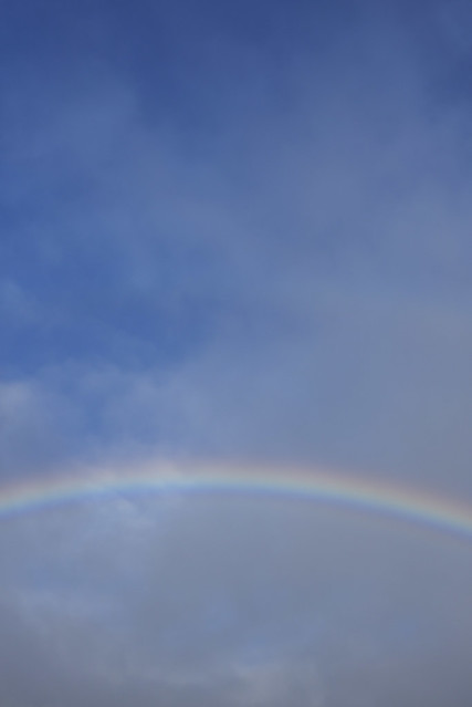 Rainbow  - atana studio