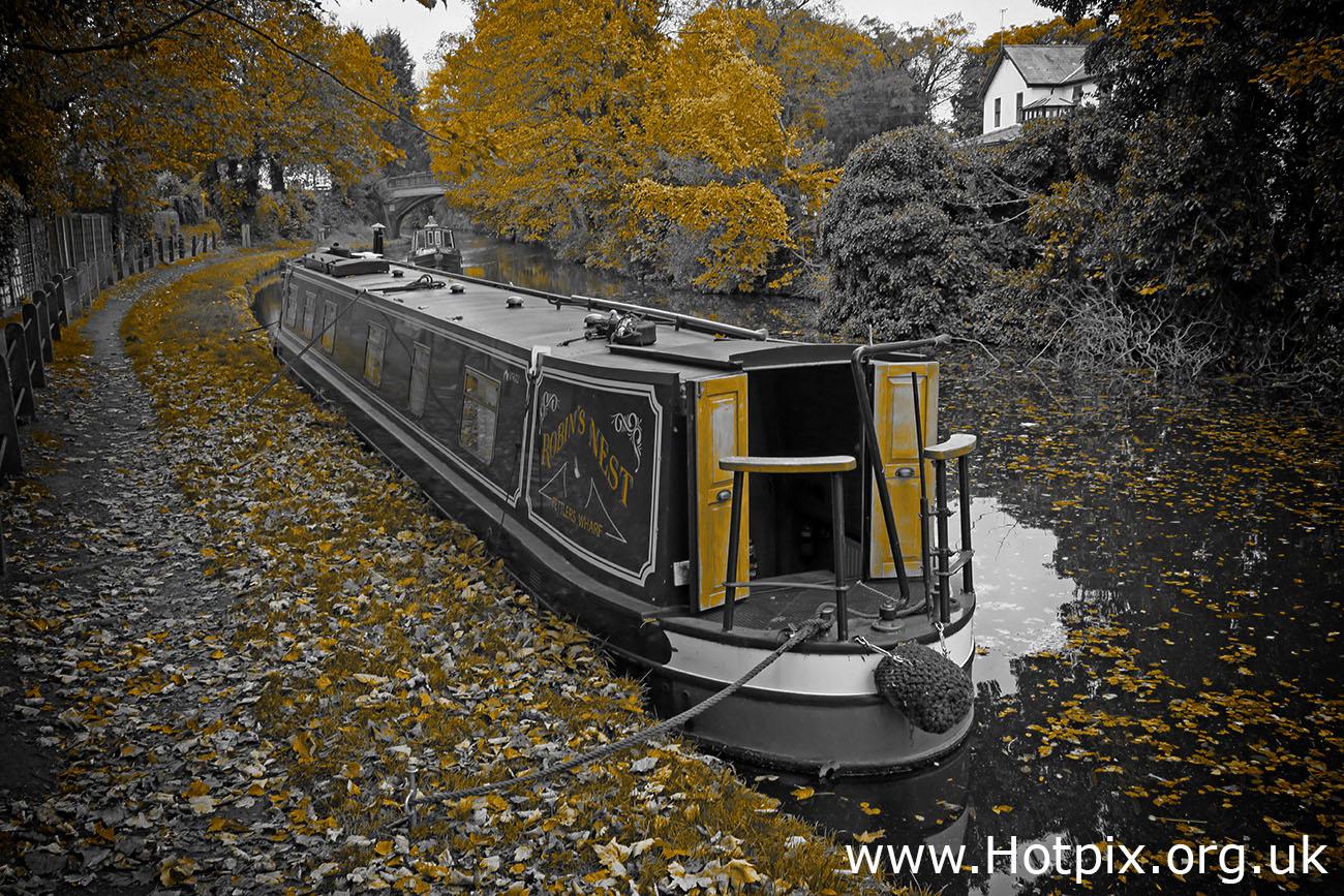 GoTonySmith,HotpixUK,Hotpix,Tony Smith,HousingITguy,365,Project365,2nd 365,HotpixUK365,Tone Smith,Bridgewater Canal,waterway,canals,autumn