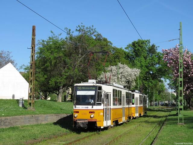 Az 56-os villamos a Krisztina körúton