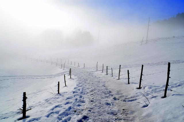 Le chemin qui se perd dans le brouillard