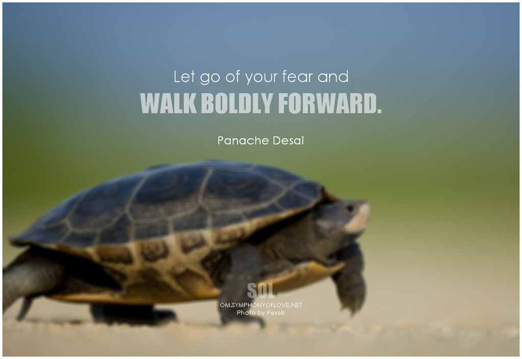 Panache Desai Quote: Panache Desai Let Go Of Your Fear And Walk Boldly Forward