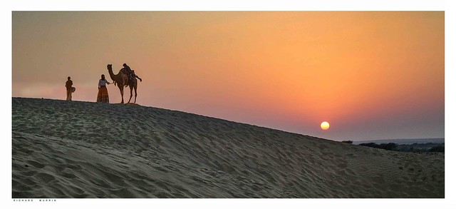 Silhouettes, Sunset Over Pakistan, Thar Desert .