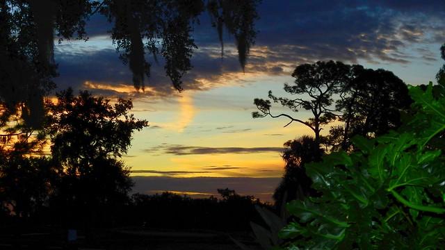 Sunrise November 29th
