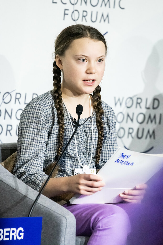 Image result for greta thunberg economic forum
