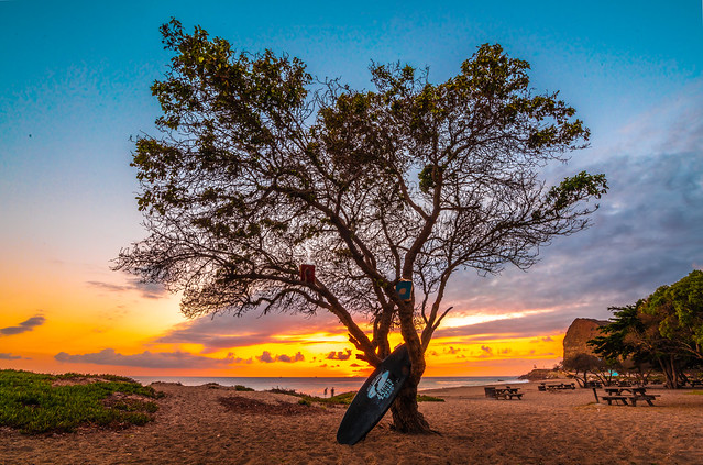Malibu Beach Sycamore Tree Surfboard Sunset! Red Orange Yellow Clouds! Breaking Winter Storm Landscape Seascape Sunset Pacific Ocean Fine Art Nature Photography! High Res 4K 8K Nikon D810 & 14-24mm f/2.8G ED-IF AF-S NIKKOR Lens Elliot McGucken Fine Art