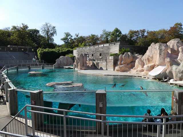 Zoo d'Amnéville - 10.09.16