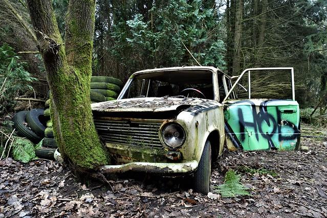 Cars do grow on trees
