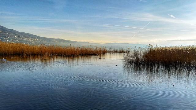 Il mio lago