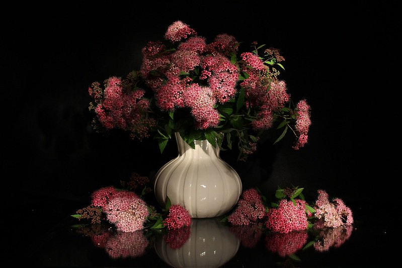 Обои цветы, букет, чёрный фон картинки на рабочий стол, раздел цветы - скачать