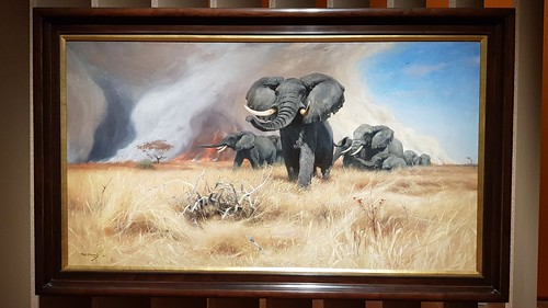 Wilhelm Kuhnert - Elefant