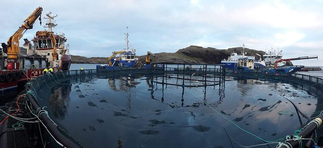 Hellisay fish farm