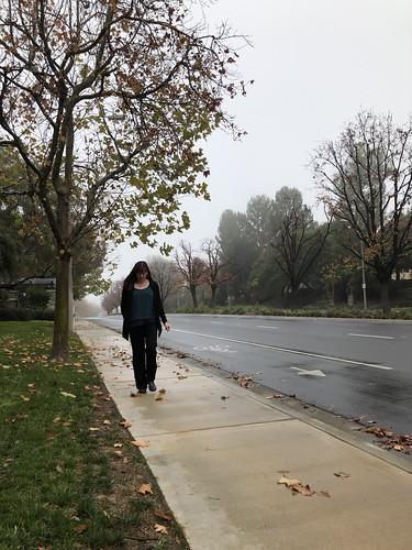 100views selftimed stevensonranch sunday walking 10secondtimer foggy nature fog timer iphone8plus january day6 365days