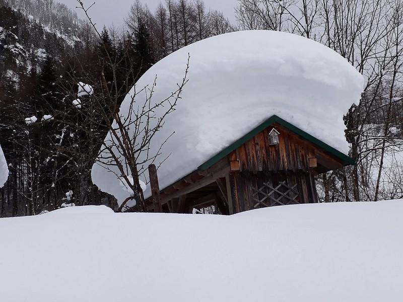 SchneedruckRosenau-28