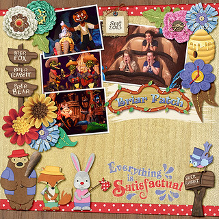 The Briar Patch - Splash Mountain