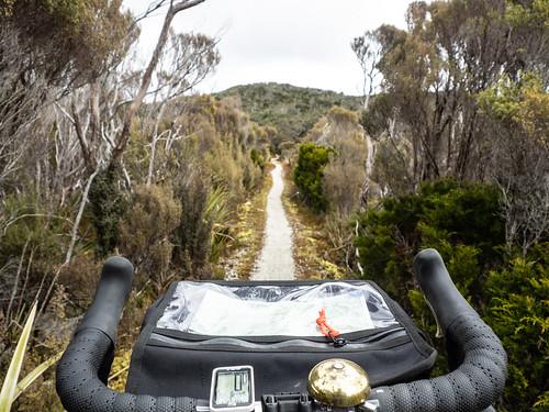 PA060081.jpg | by Auckland Bike Slob