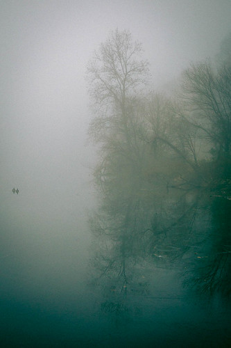 water lakeelkhorn landscape fog