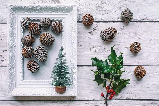 362/365: A festive frame