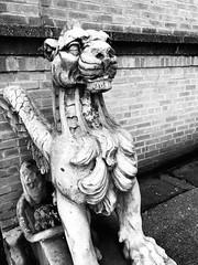 Jackson Heights dragon