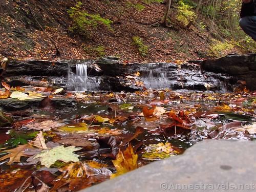 Little waterfall in Barnes Gully, New York