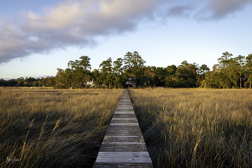 landscapes marsh southcarolina sunset water