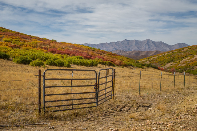 Gated Mountain Pasture