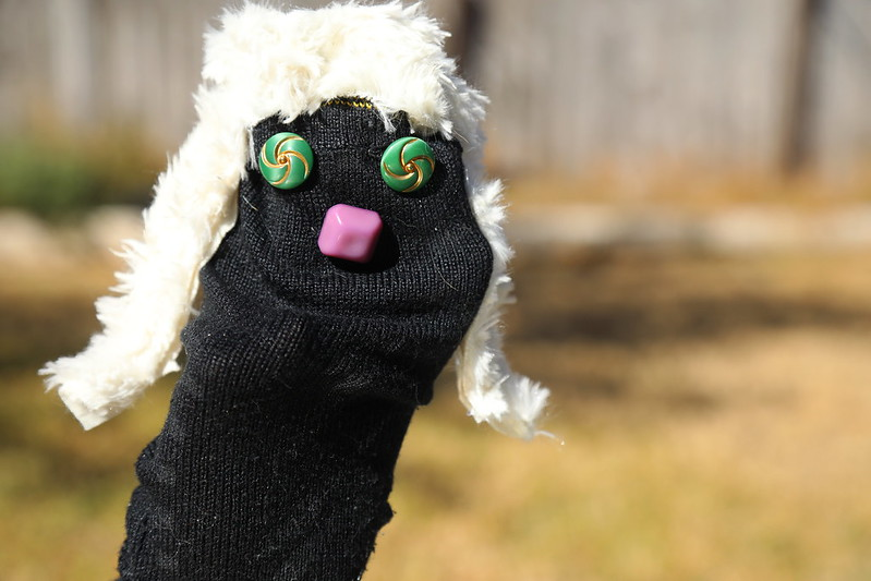 sock_puppet_5Div4583