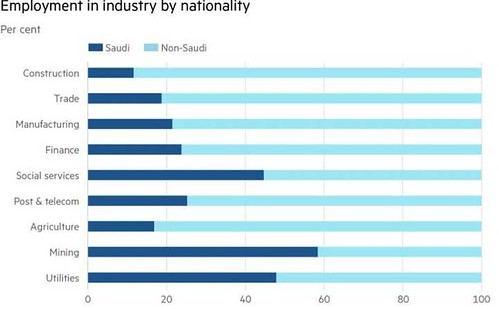 4757 Saudi Arabia has terminated 71% of expatriates in the Government sectors 01 | by Life in Saudi Arabia