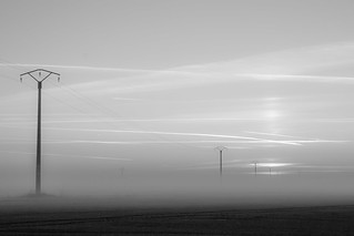 Dans la brume | by christineverger